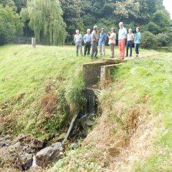 Obstacle à la continuité - aval de l'étang 2